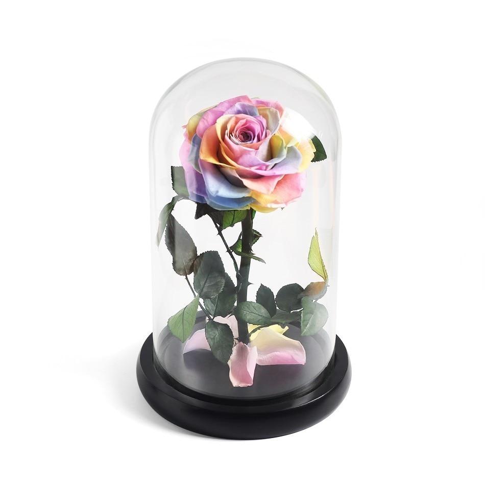 Красавица и Чудовище красная роза в стеклянном куполе на розовой гостиной спальни украшения стола подарки на день Св. Валентина подарки на день рождения - Цвет: Multi