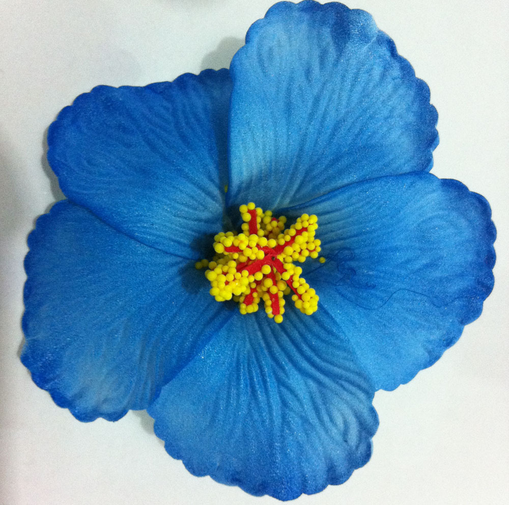 36pcs Free Shipping Mixed Colors Foam Hawaiian Flower Hibiscus