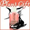 Wrinkle 100 Pure Base Oil Skin Care Natural Squalane Oil 100ml Acne Freckle Essential Oils Kingdom
