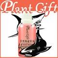 Wrinkle 100% pure base oil skin care Natural squalane oil 100ml Acne Freckle Essential oils Kingdom Natural oil