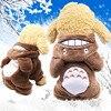 Brown Totoro