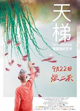 《天梯:蔡国强的艺术》2016年中国大陆,美国纪录片电影在线观看