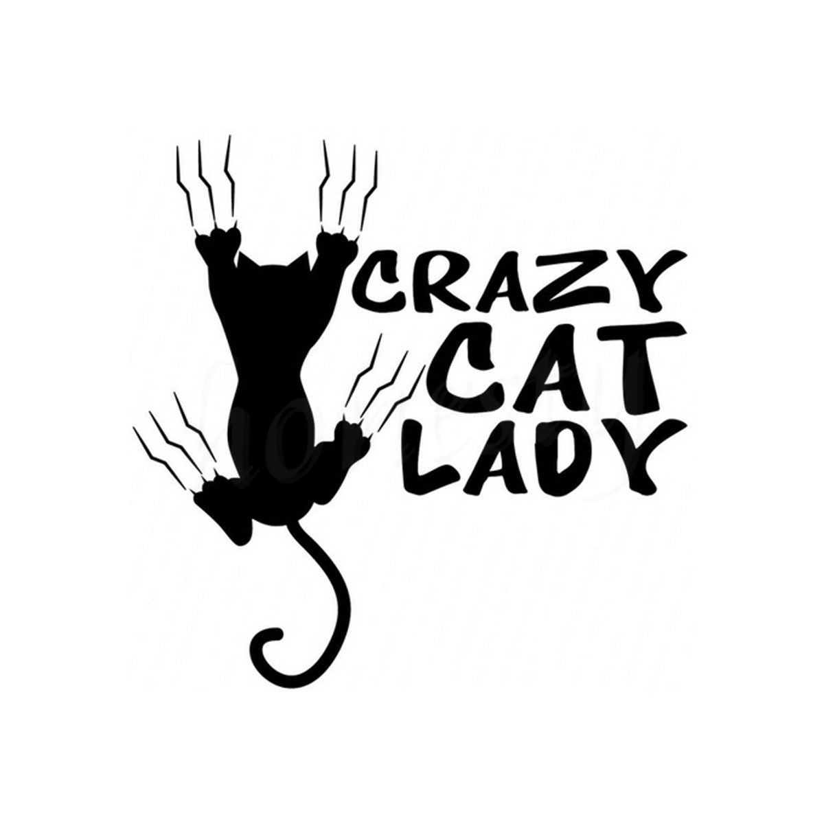 Funny Crazy Cat Lady Vinyl Car Motorcycle Wall Home Glass Window Door Laptop Stickers Decals Car Styling Black 11.5cmX11.5cm