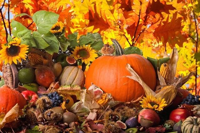 Herbst Ernte Gemuse Fruchte Lebensmittel Poster Stoff Silk Poster