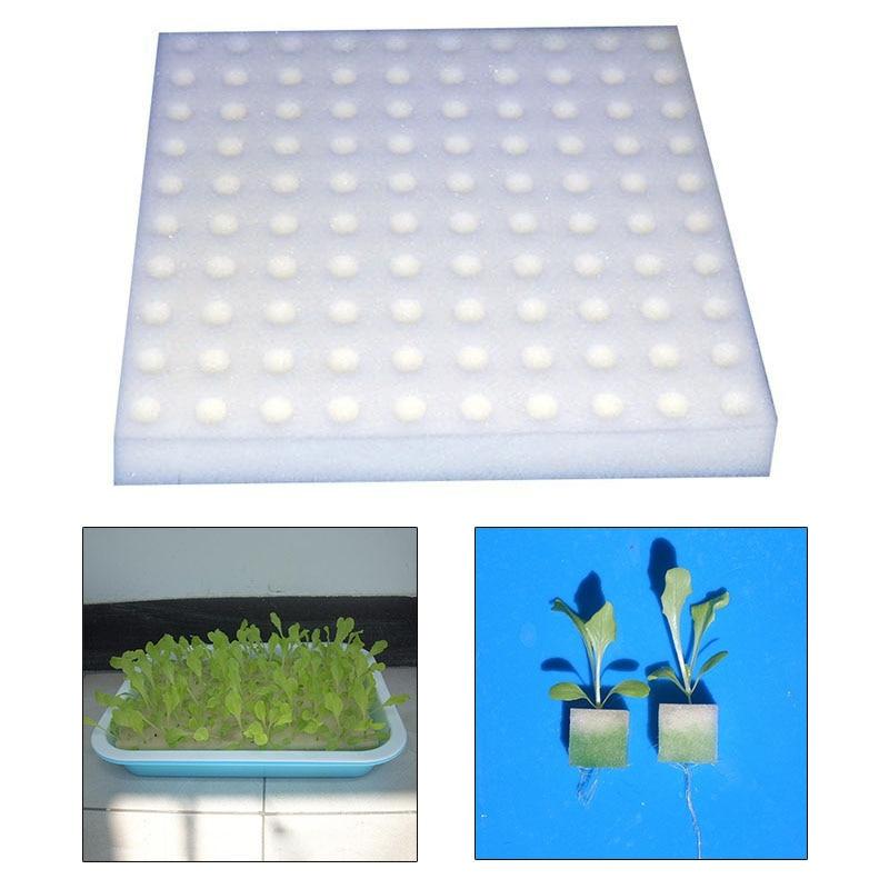 House Plants Feeding Tools Sponge Hydroponic Petri Dish Plant Vegetable Cultivation Soilless Planting Seedlings HomeGreen-plant