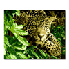 Framework DIY Oil Painting By Numbers Kits Coloring Animals Leopard Pictures Digit Drawing On Canvas Living