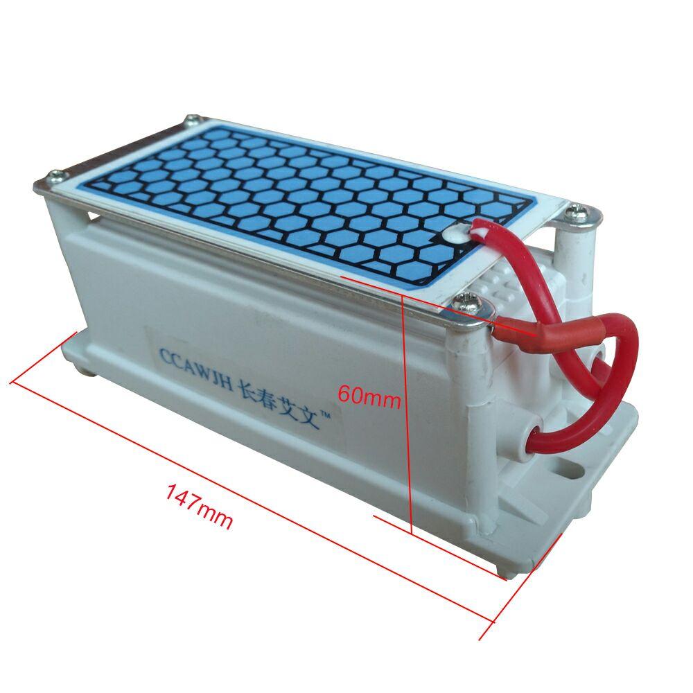 5g ozone generator (2)