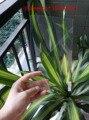Универсальный Фильм Закаленное Стекло-Экран Протектор Для 8 дюймов Tablet PC Ultra thin HD Clear 0.33 мм 2.5D Прозрачный Ультра-тонкий