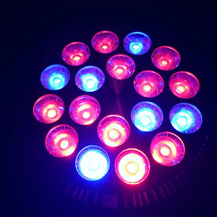 Mini E27 54w 12red 6Blue AC85-265V high power LED Platn Grow Light LED Grow Panel For Hydroponics and Small Plants High Quality