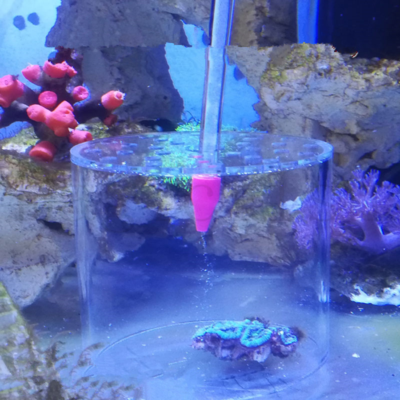 Aquarium LPS Coral Feeder Cover Reef Feeder Pipe Protect Brain Coral For Marine Reef Tank