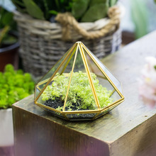 Open Diamond Glass Geometric Terrarium Succulent Fern Moss Tabletop Terrarium Box without Door Gold