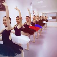 Adult Ballet Leotard Tutu Skirt Female Swan Lake Dance Costumes Professional Ballet Tutu Pancake Skirts For