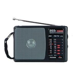 Дэ сын r-203t fm и тв-радио