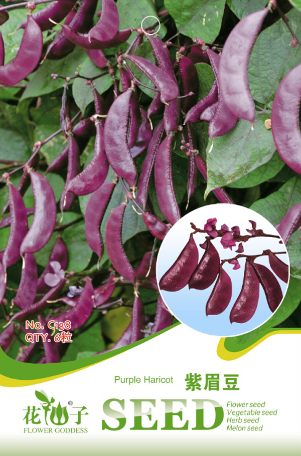1 pack 6 pcs Purple Haricot Bean Seeds Lablab Purpureus Sweet Vegetable Plants bonsai seeds DIY home garden free shipping
