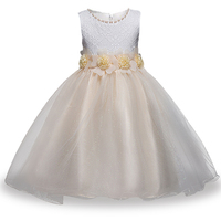 Children S Clothing Spring Summer Flowers Girls Dress Dress Children Lace Princess Skirt Net Yarn Dress