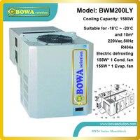 10M3-18'C all-in-one unidade R404a freezer para armazenamento de gelo ou de armazenamento de leite