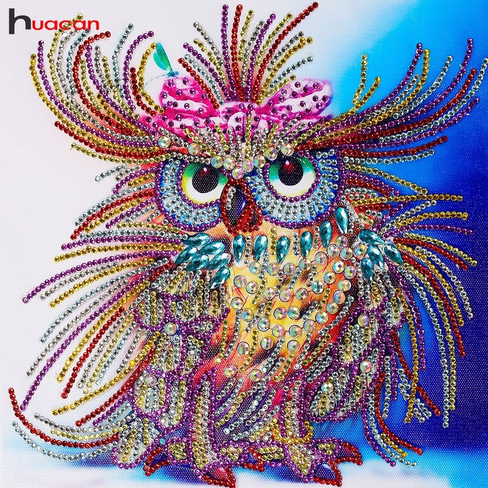 Diamond Painting Animal Owl Special Shaped Drill Partial Diamond Embroidery Owl Picture Of Rhinestones Cross Stitch Mosaic 24x24