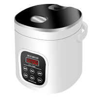 1.6L Car Rice Cooker Mini Small Home Cooking Appliances for The Car Students Children Old Man Cooking Soup Steamed Cake
