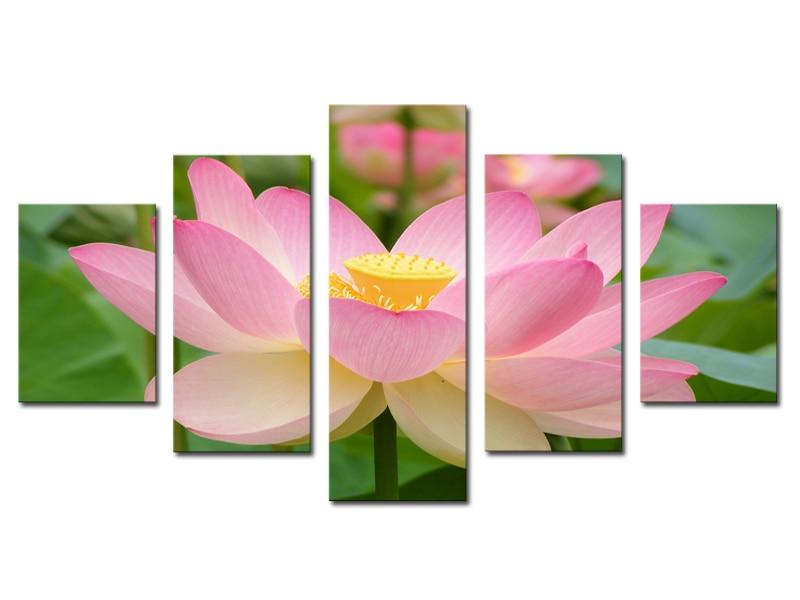 Lotus Flower Wall Art aliexpress : buy unframed 5 panels pink lotus flowers print