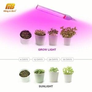 Image 4 - USB pełnozakresowe Led roślin oświetlenie do uprawy 3W 5W 5V Fitolamp dla hydroponiczna roślina szklarniowa ogród lampa Led do wzrostu oświetlenie do uprawy s lampa fito