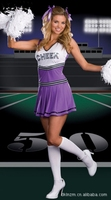Free Shipping 2014 New Ladies Sexy Glee Cheerleader Party Costume School Girl Full Outfits Fancy Dress