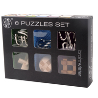 6 In One 6Pcs IQ Brain Teaser Set Metal Puzzle + Wooden Kong Ming Lock for Children Adults
