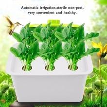 US 6 Holes 110V Plant Site Hydroponic System Indoor Garden Cabinet Box Grow Kit Bubble Garden Pots Planters Nursery Pots
