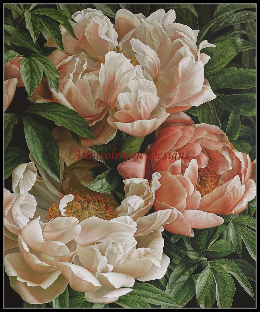 Needlework For Embroidery DIY French DMC High Quality - Counted Cross Stitch Kits 14 Ct Oil Painting - Coral Charm Peony II