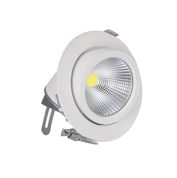 Free shipping 1pcs 30W LED Spotlight of trunk COB lamp,AC85~265V,White Body free shipping high quality 30w cree cob chip led down light embedded led trunk lamps lighting with led driver ac85 265v