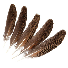 Wholesale 10Pcs Natural Real Owl Eagle Feathers 25-40CM 10-16 Pheasant Feather for Crafts Jewelry Making Carnival Plumes Plumas
