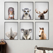 Elephant Horse Koala Squirrel Art Prints Wall Canvas Painting Nordic Posters And Pictures For Living Room Decor