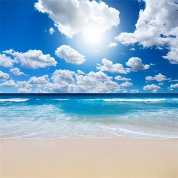 laeacco natural backdrops for photography palms tree beach sand summer holiday blue sky scenic photo background photo studio Laeacco Tropical Sea Beach Blue Sky Cloud Shiny Natural Scenic Photo Backgrounds Photocall Photographic Backdrops Photo Studio
