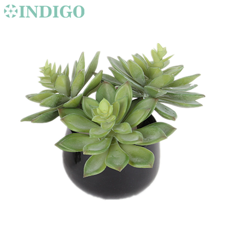 Wholesale 120 pcsStar Lotus Echeveria Elegance Artificial Succulent Plant Plastic Wall Decoration Green Background Free Shipping