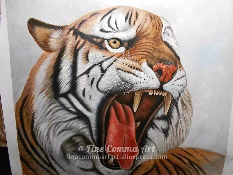 Tiger_1