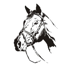 Animal Styling Vinyl Wall Sticker Racing Horse Head Art Bedroom Wall Decal Removable Mural For Living road wall decal highway vinyl sticker street wall art kids racing road bedroom living roon home decoration removable diy ww 182