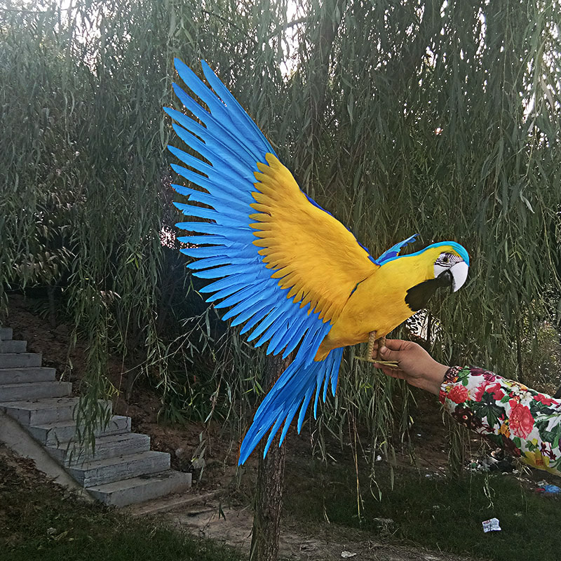все цены на large 60x100cm blue feathers parrot bird spreading wings parrot model,stage prop,home garden decoration gift s1914 онлайн