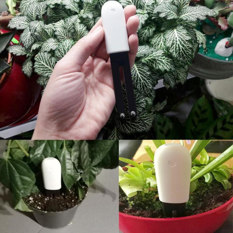 Xiao mi mi flore moniteur numérique jardin plantes herbe fleur soin sol eau lumière intelligent testeur capteur International édition Newst - 6