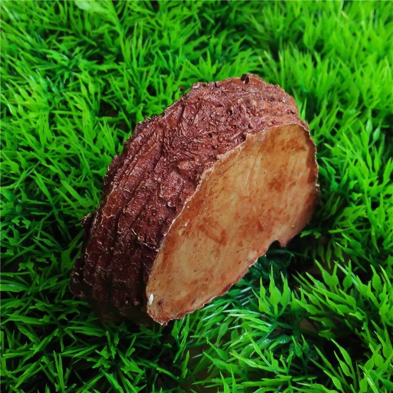 Սողունների կերակրող սողացող գունդ - Ապրանքներ կենդանիների համար - Լուսանկար 6
