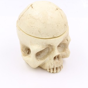Image 2 - tattoo accessories Skull Head 7 Holes Hard Resin Tattoo Ink Cup/Caps Holder Tattoo Ink Cup Holder Tattoo Accessory Free Shipping