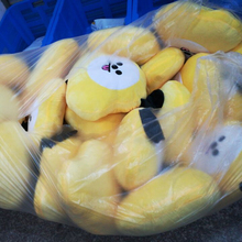 Kpop BTS Warm  Plush Doll Small Version
