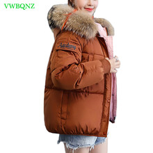 Winter New Korean bf Loose Down cotton clothing Female Short
