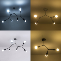 AC90 260V Multiple heads ceiling light 12W Super Bright LED Ceiling Lamp Surface Mounted Led living room lights