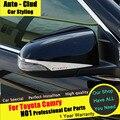 AUTO-CLUD Для Toyota Carmy Вспять зеркало покрытие придерживаться стайлинга автомобилей 2012-15 зеркало отделки Camry вспять зеркало светодиодные полосы