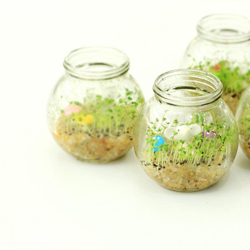 decorative creative glass pot heat shaped grass plant flower pots planter for home desktop decoration beautifying office bonsai grass pots planters mini