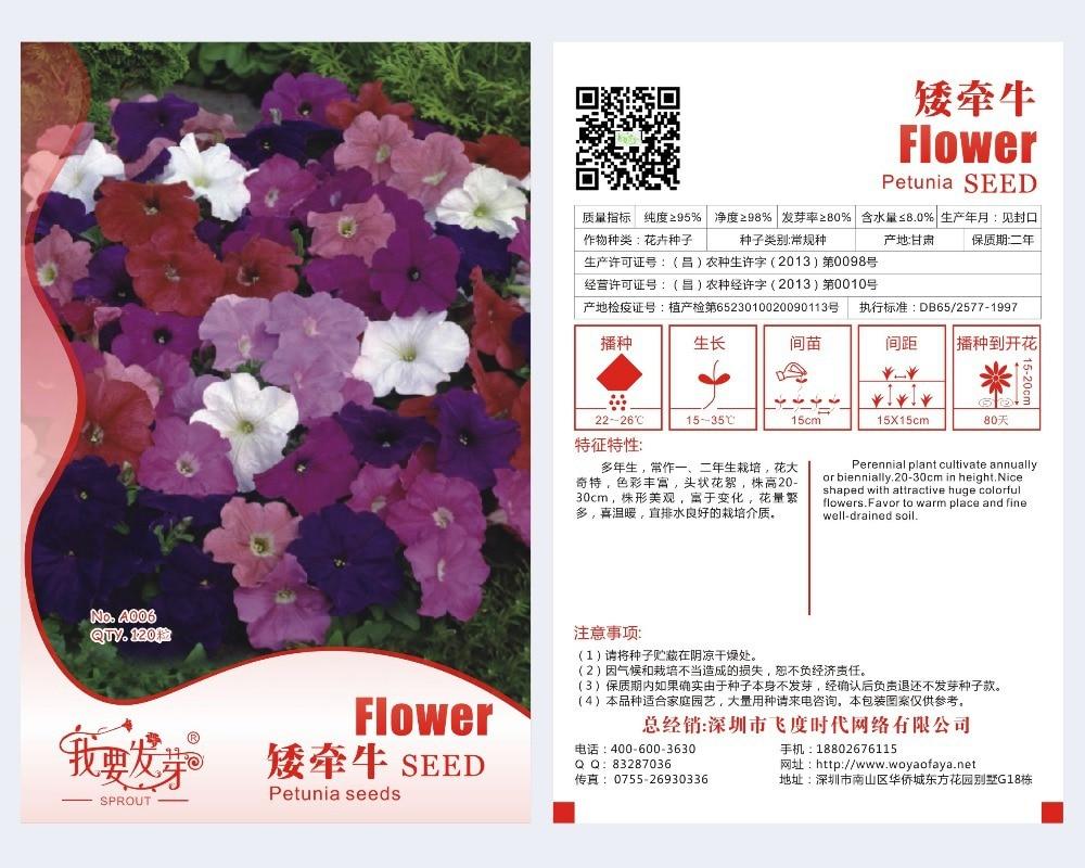 Flowers Garden Petunia Seeds Original Package 120 Pieces Super Easy
