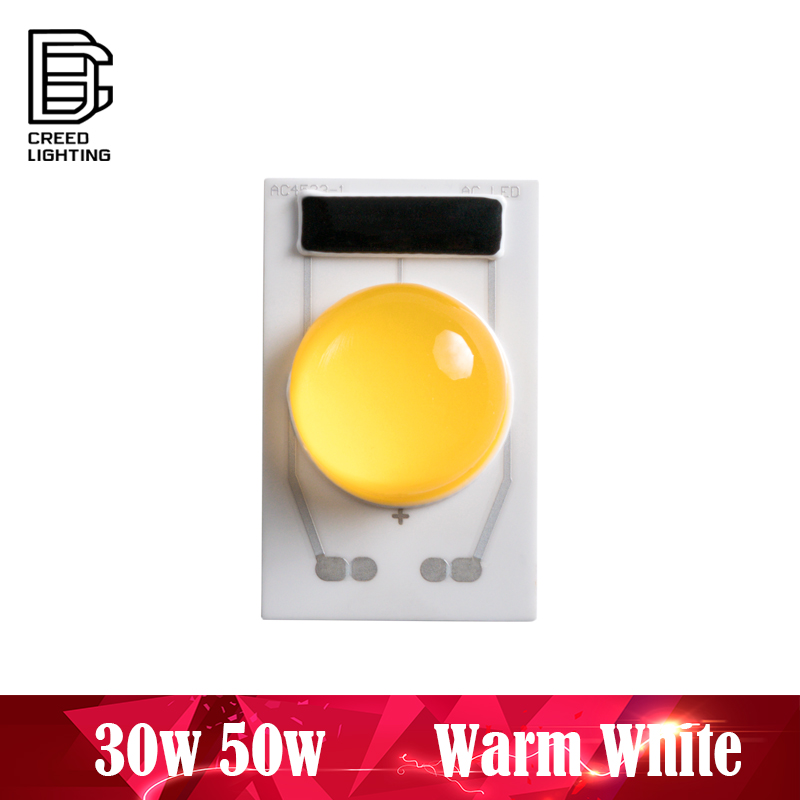 LED COB Lamp Chip 50W AC 110V 220V Warm White Input Smart IC Driver Fit No Need Driver  For DIY LED Floodlight Spotlight Chip