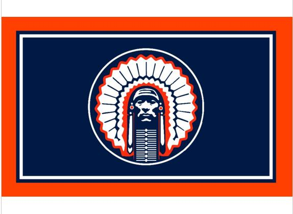 Wholesale 3x5ft Illinois Fighting Illini Chief Flag with two metal grommets Polyester custom banner