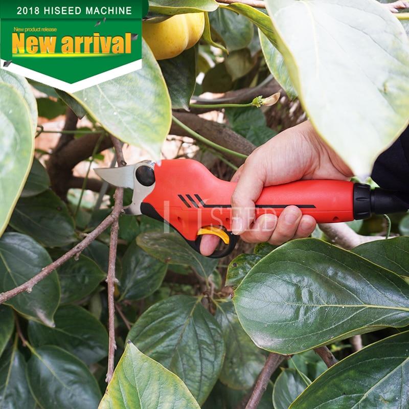 forbici elettriche da potatura per frutteto e giardino (lama - Attrezzi da giardinaggio - Fotografia 1