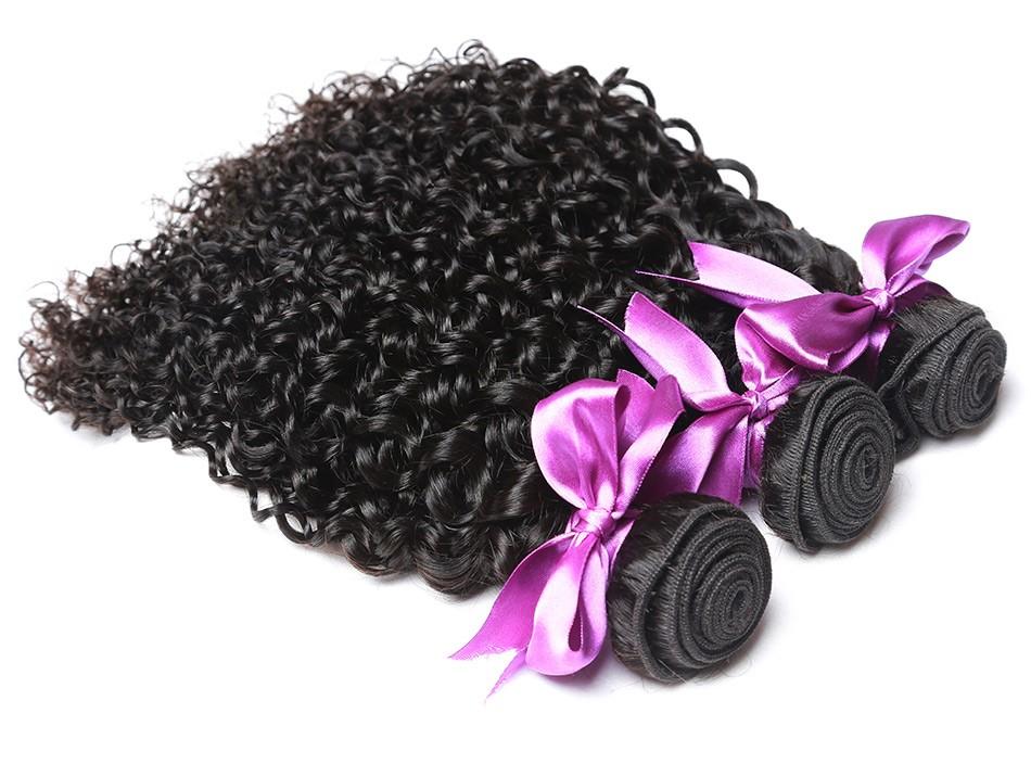1_07 malaysian curly hair
