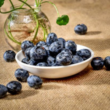 50pcs Artificial Blueberry Craft Fake Fruit Blueberries Home Kitchen Cabinet Decoration realistic shape